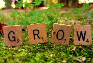 Grow_may262015